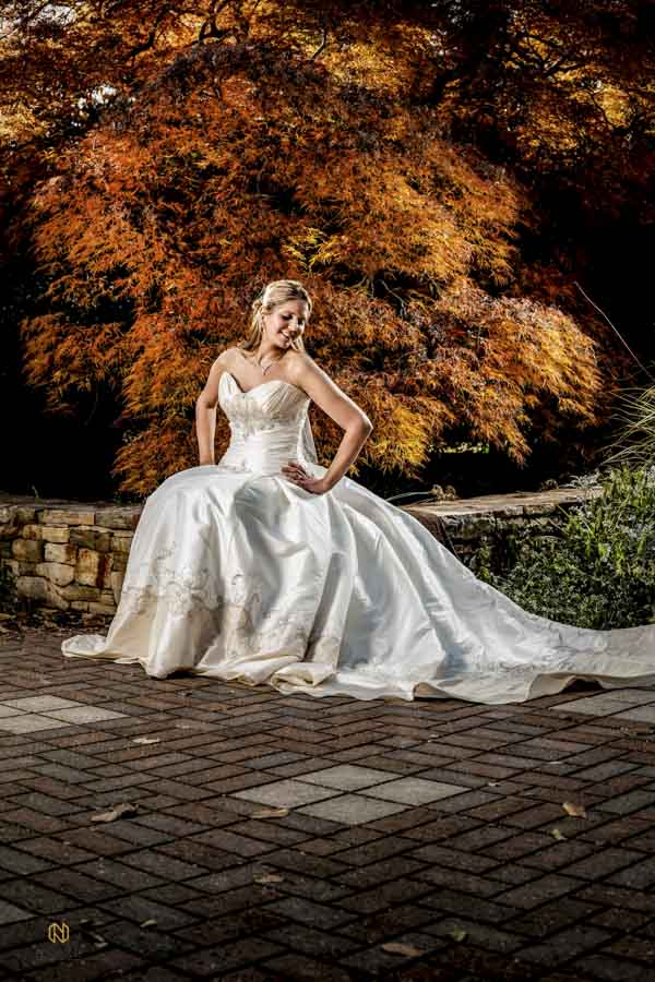 Bride taking fall bridal portraits in front of orange tree in the White garden at JC Raulston Arboretum