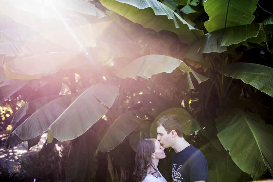 man kissing a woman on the forehead in front of some palm trees at JC Raulston arboretum