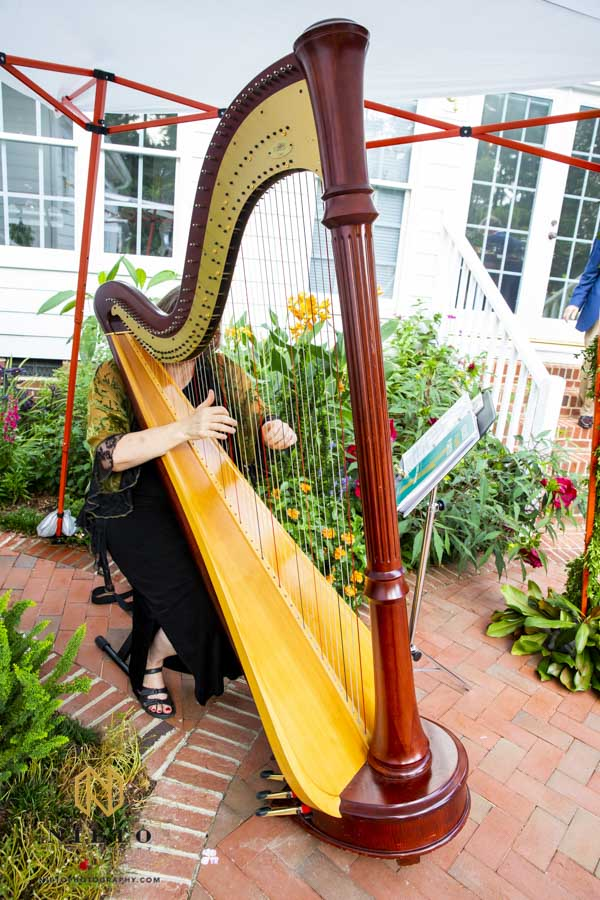 harpist playing at side at the backyard garden wedding