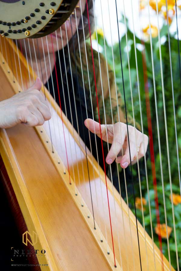 close up of harpist hands playing the harp
