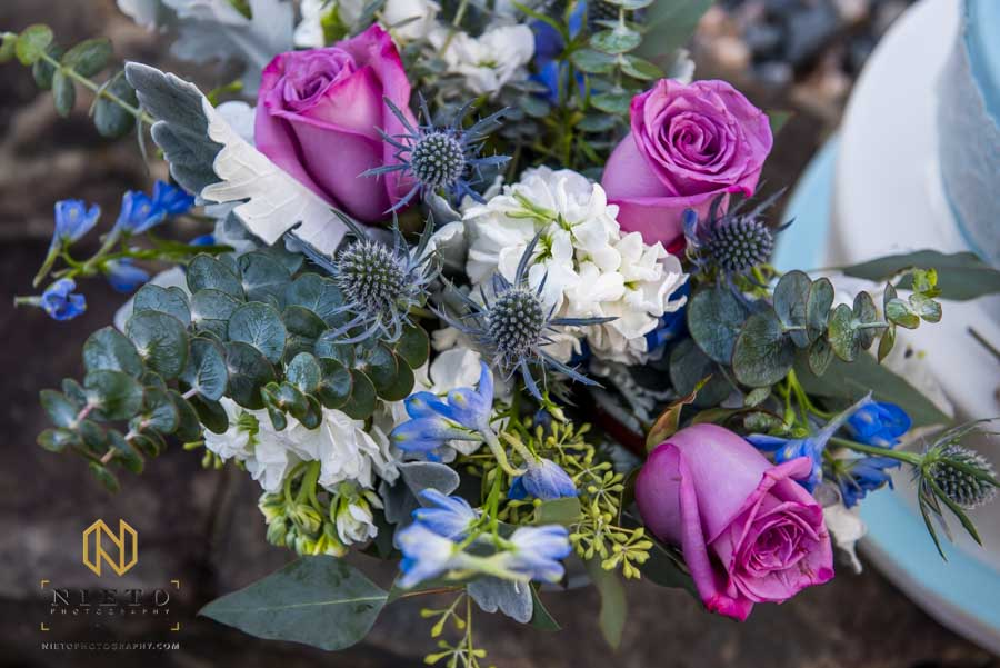 purple, blue, white, and green flowers