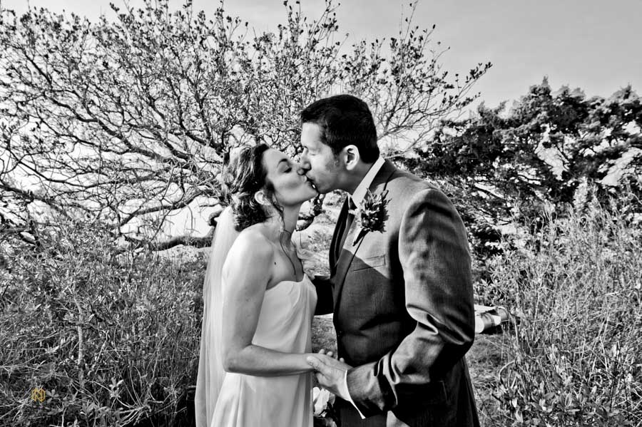 Black and White image of a bride and groom kissing in front of a tree