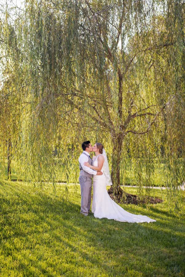 bride and groom kissing under the willow tree at Winmock at Kinderton
